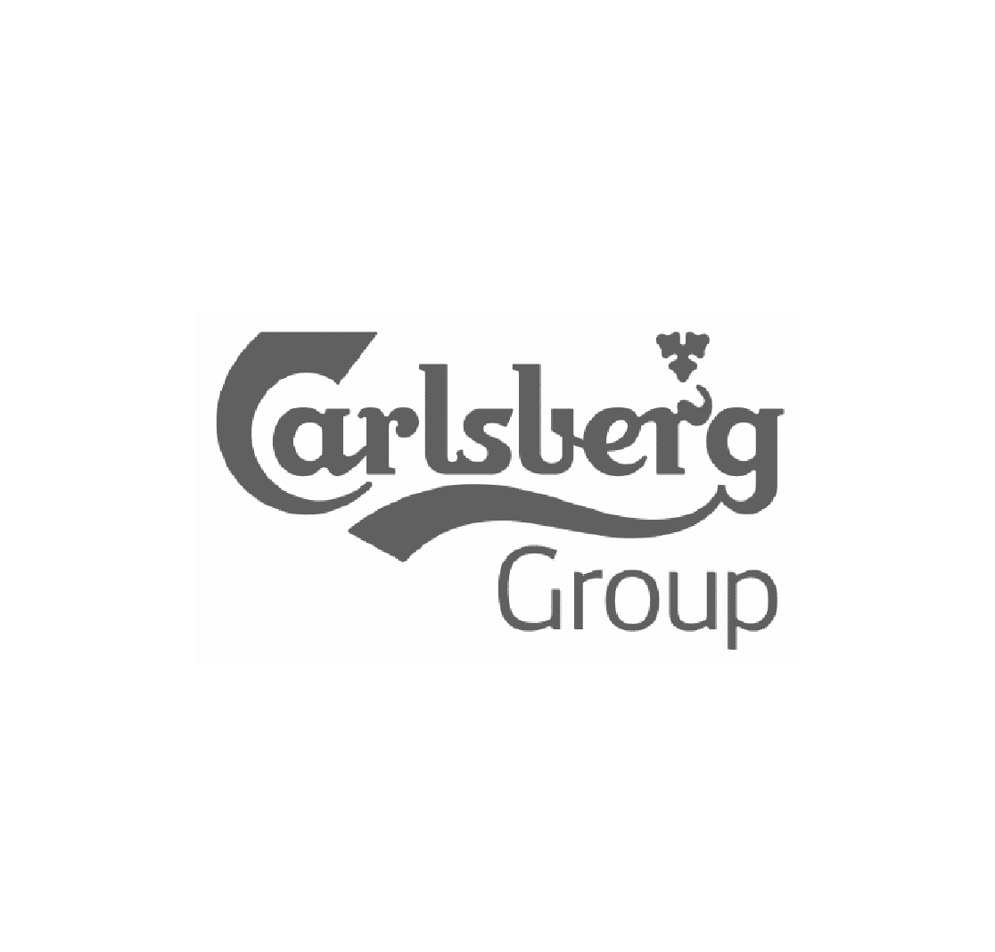 The Carlsberg Group