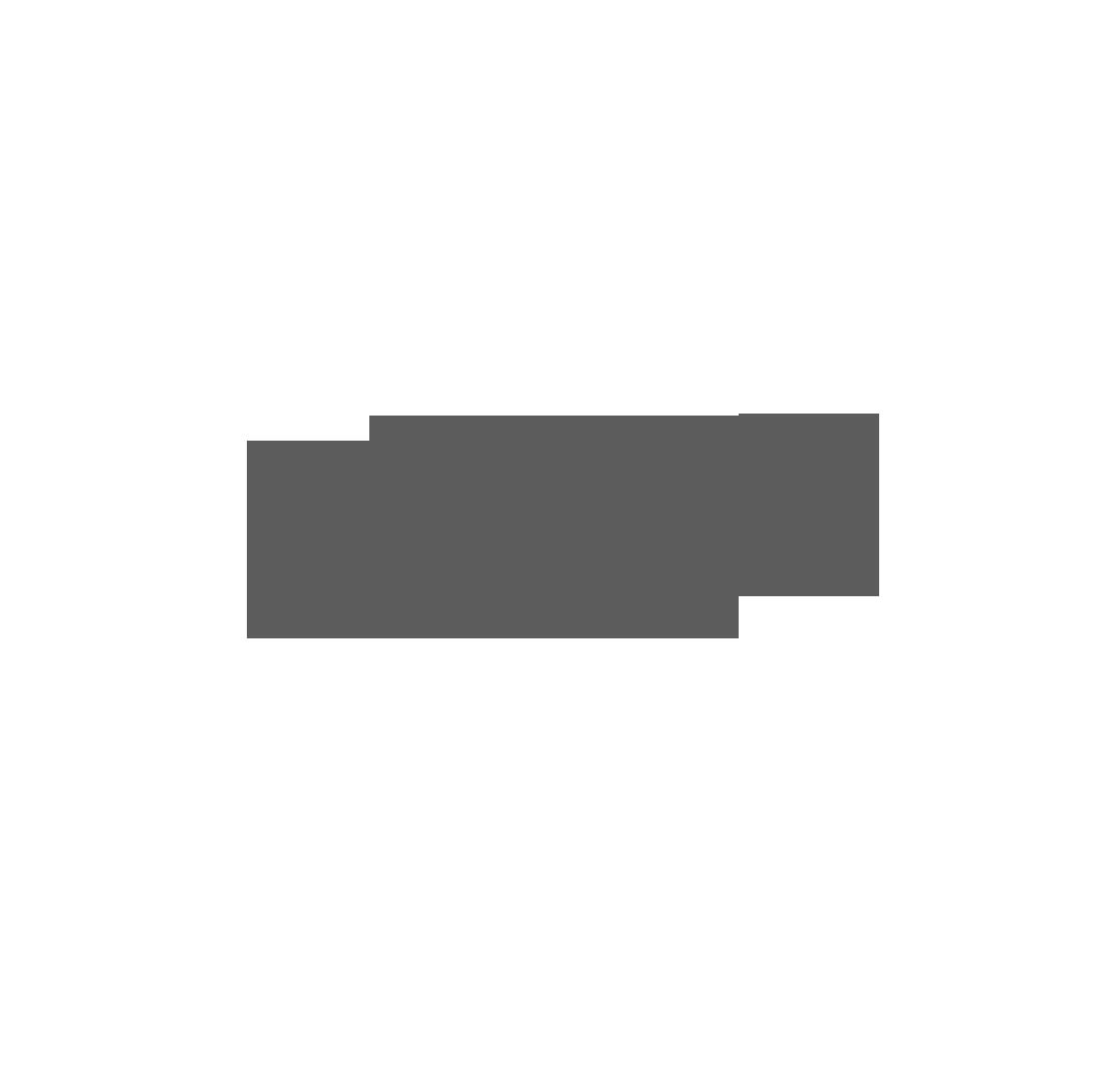 NSW Ports